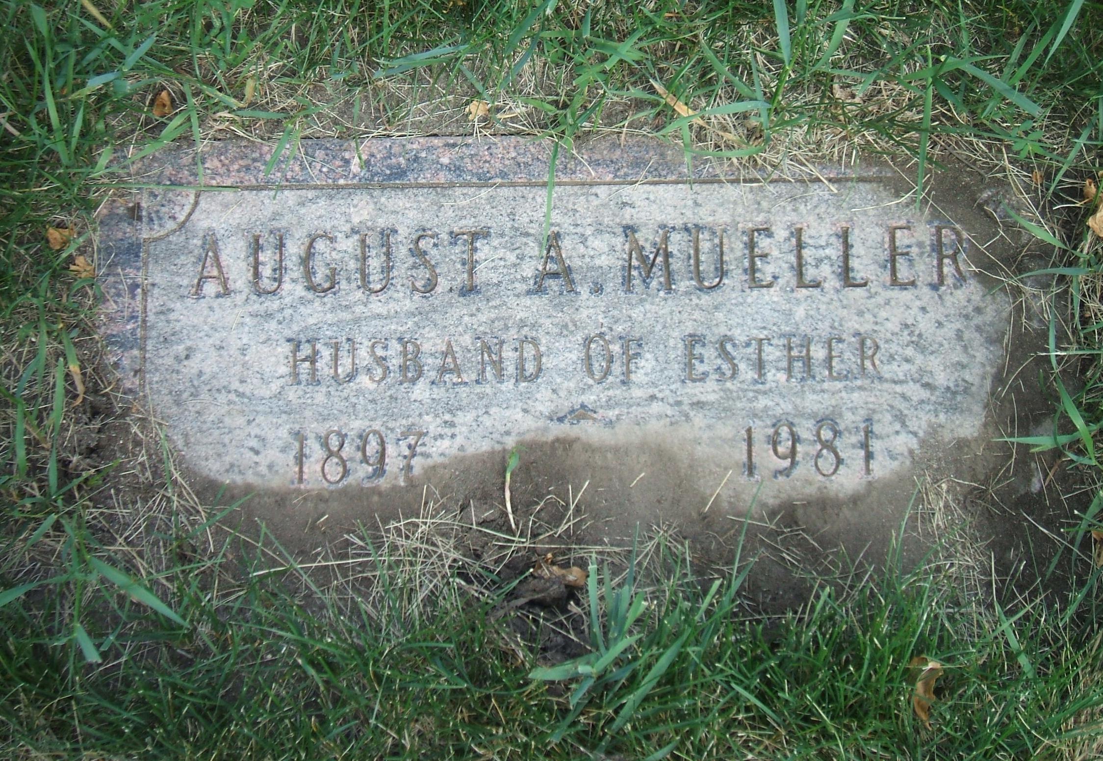August A Mueller