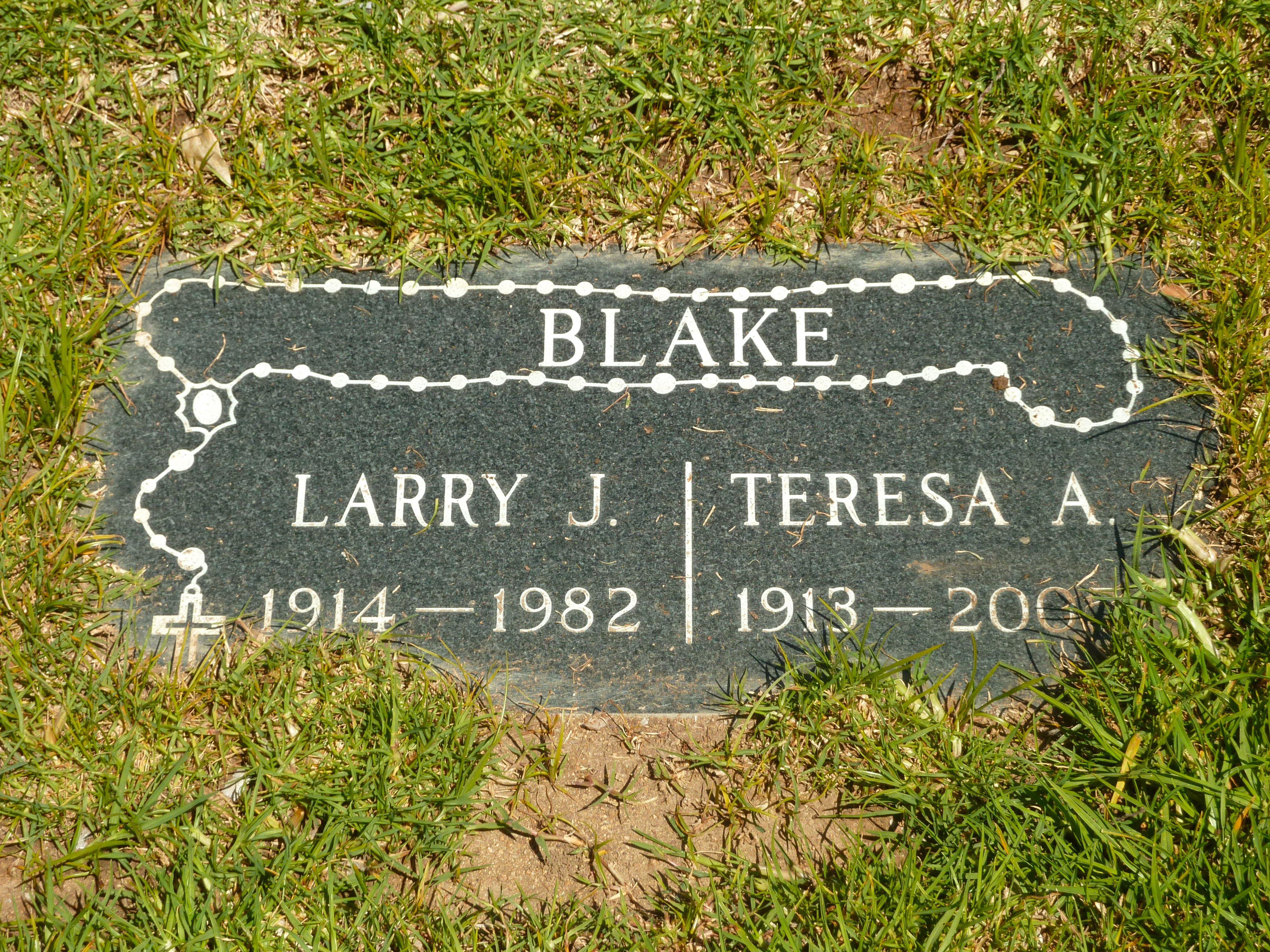 Larry J. Blake