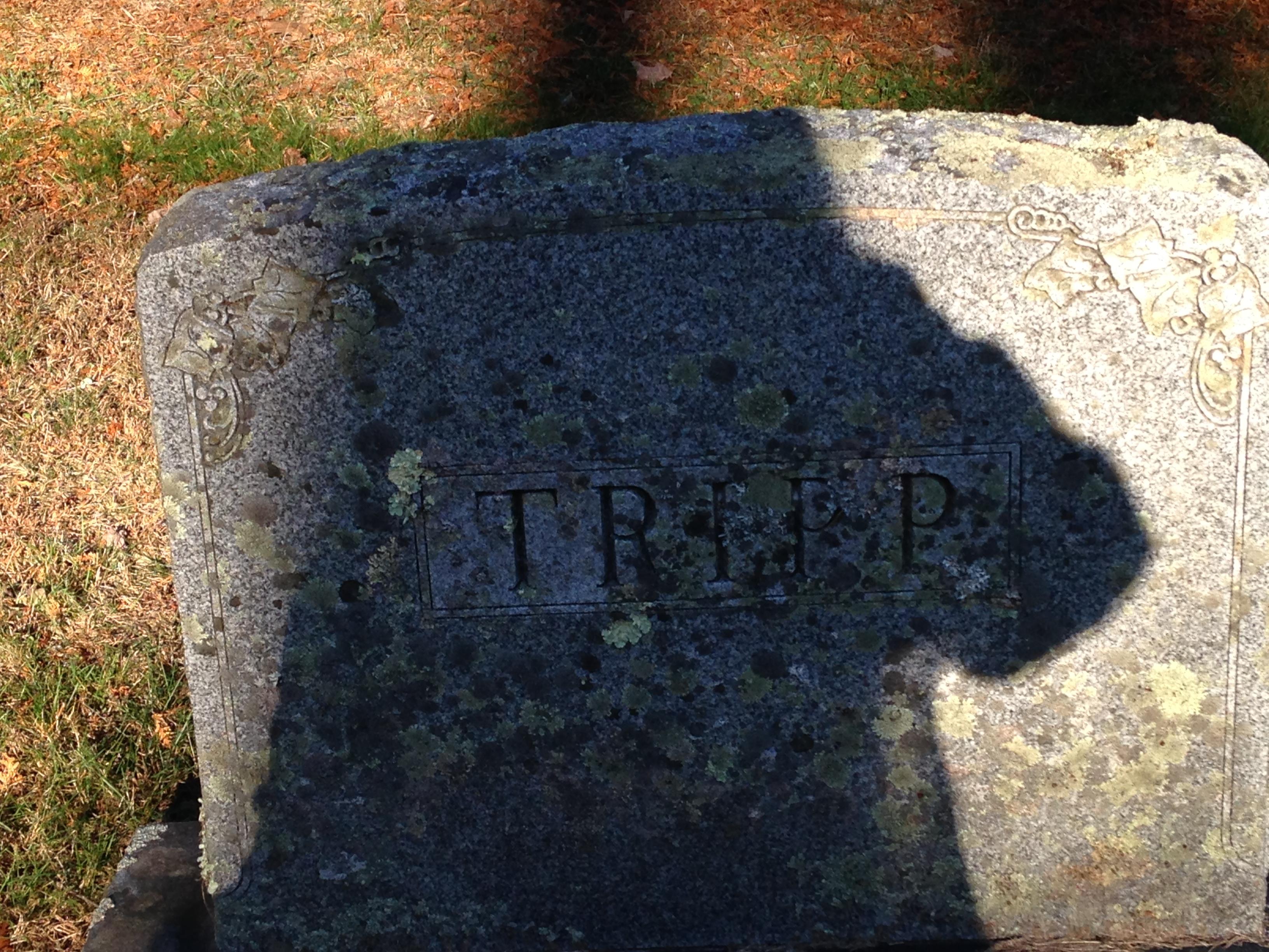 Arthur Warren Tripp