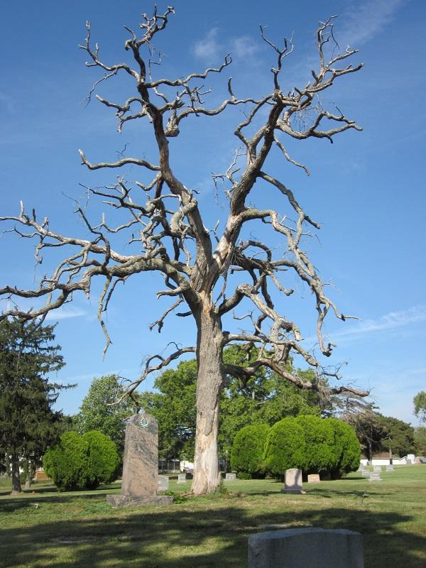 Lakewood Park Cemetery