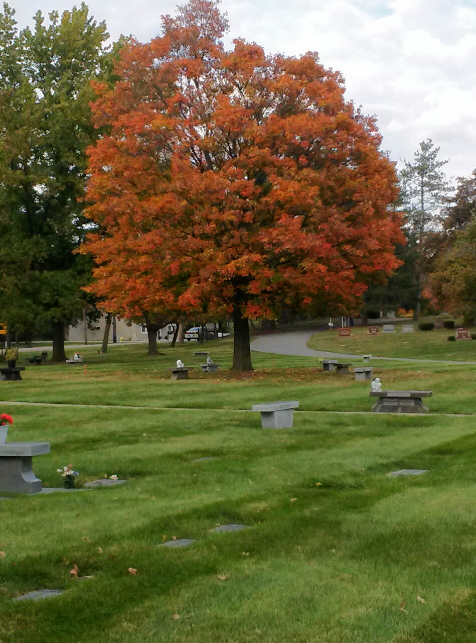 Deepdale Memorial Park in Delta Township, Michigan - Find A Grave ...