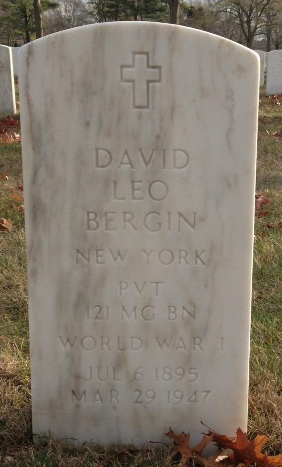 David Leo Bergin