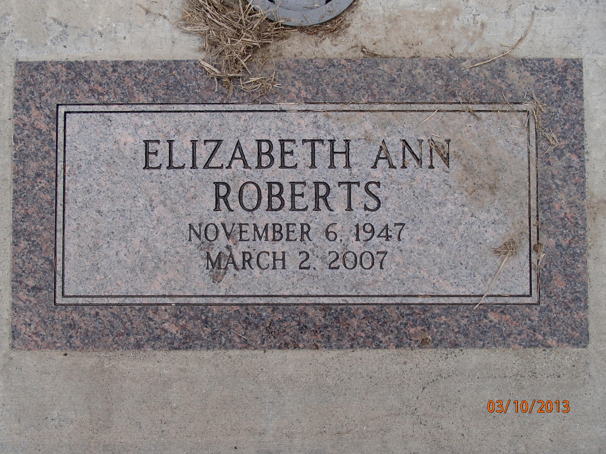 Elizabeth ann roberts phrase