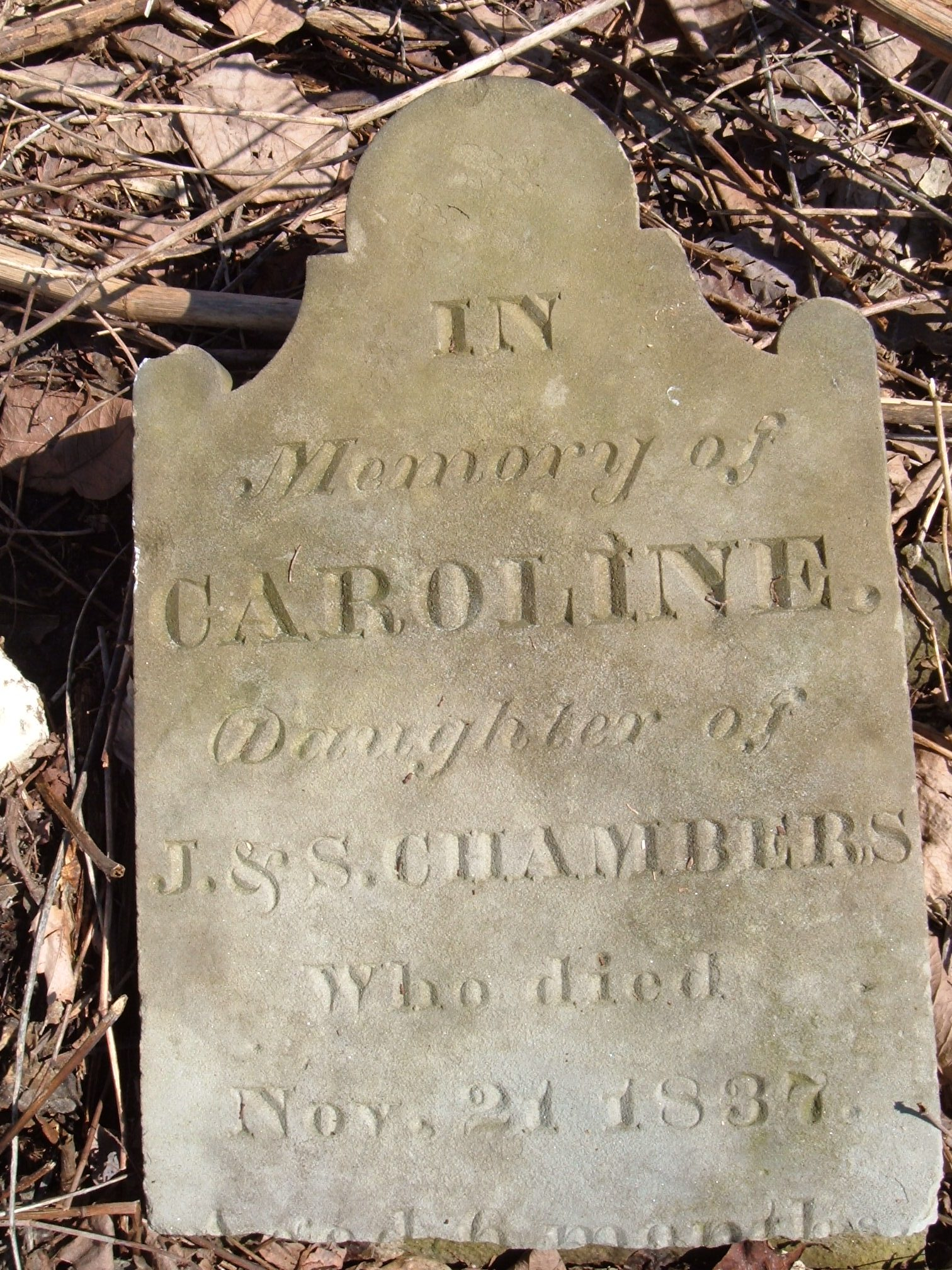 Caroline Chambers