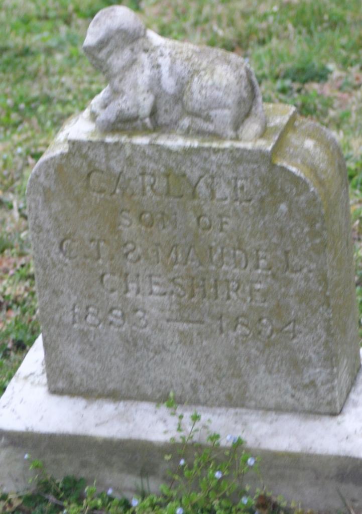 Carlyle Cheshire