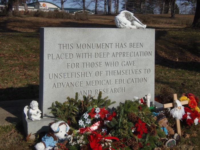 Anatomy Board Gravesite In Sykesville Maryland Find A Grave Cemetery