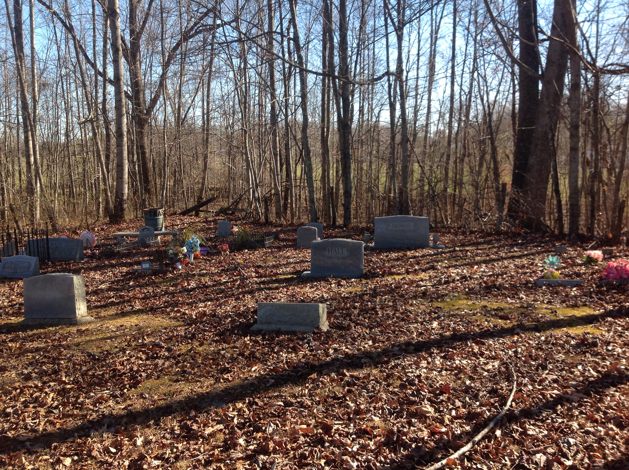 Hall Cemetery #1
