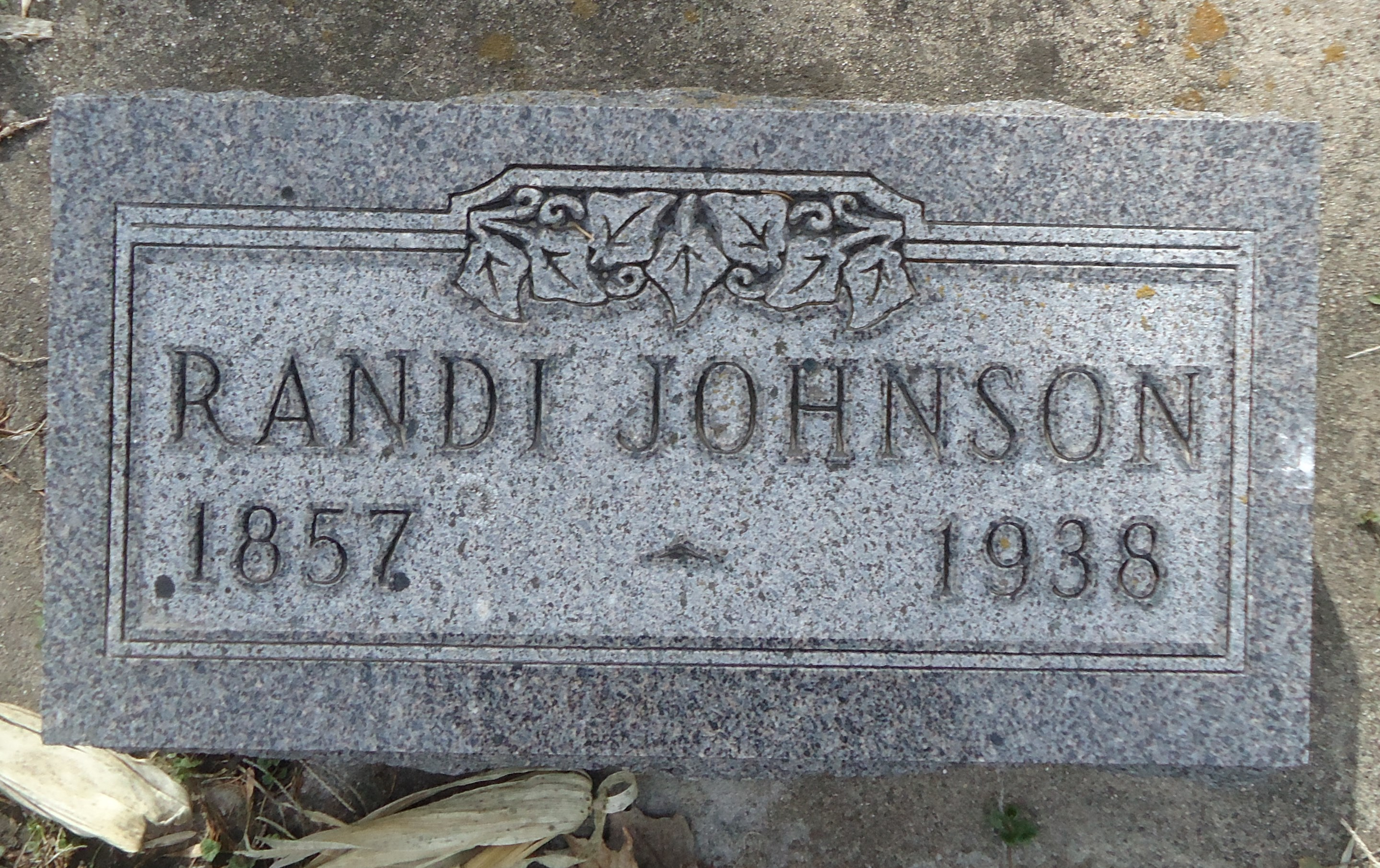 Randi <i>Narveson</i> Johnson