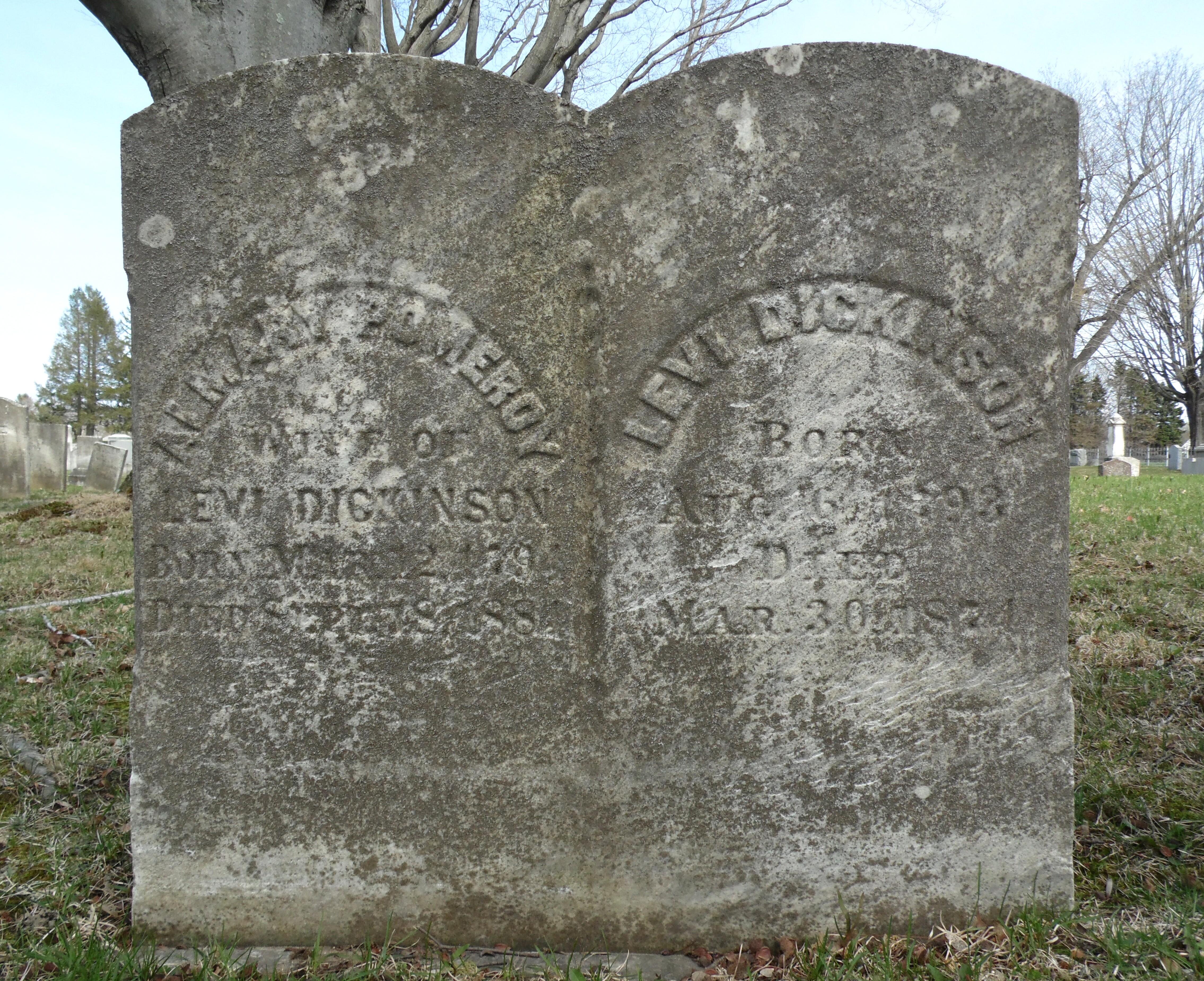 Almary <i>Pomeroy</i> Dickinson