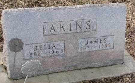 Delia J. <i>StPierre</i> Akins