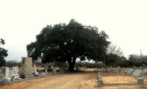Sumter Cemetery