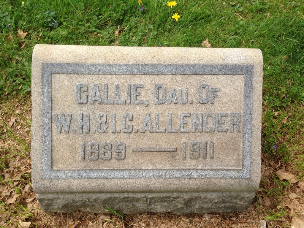 Callie Allender