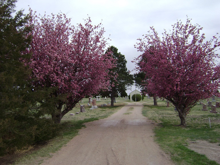 Bird City Cemetery