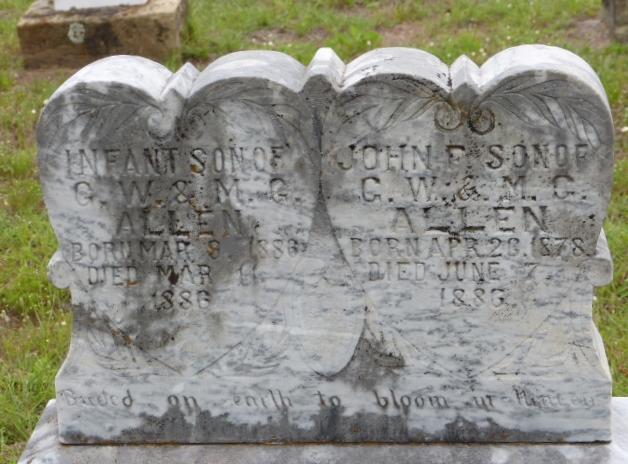 John F Allen