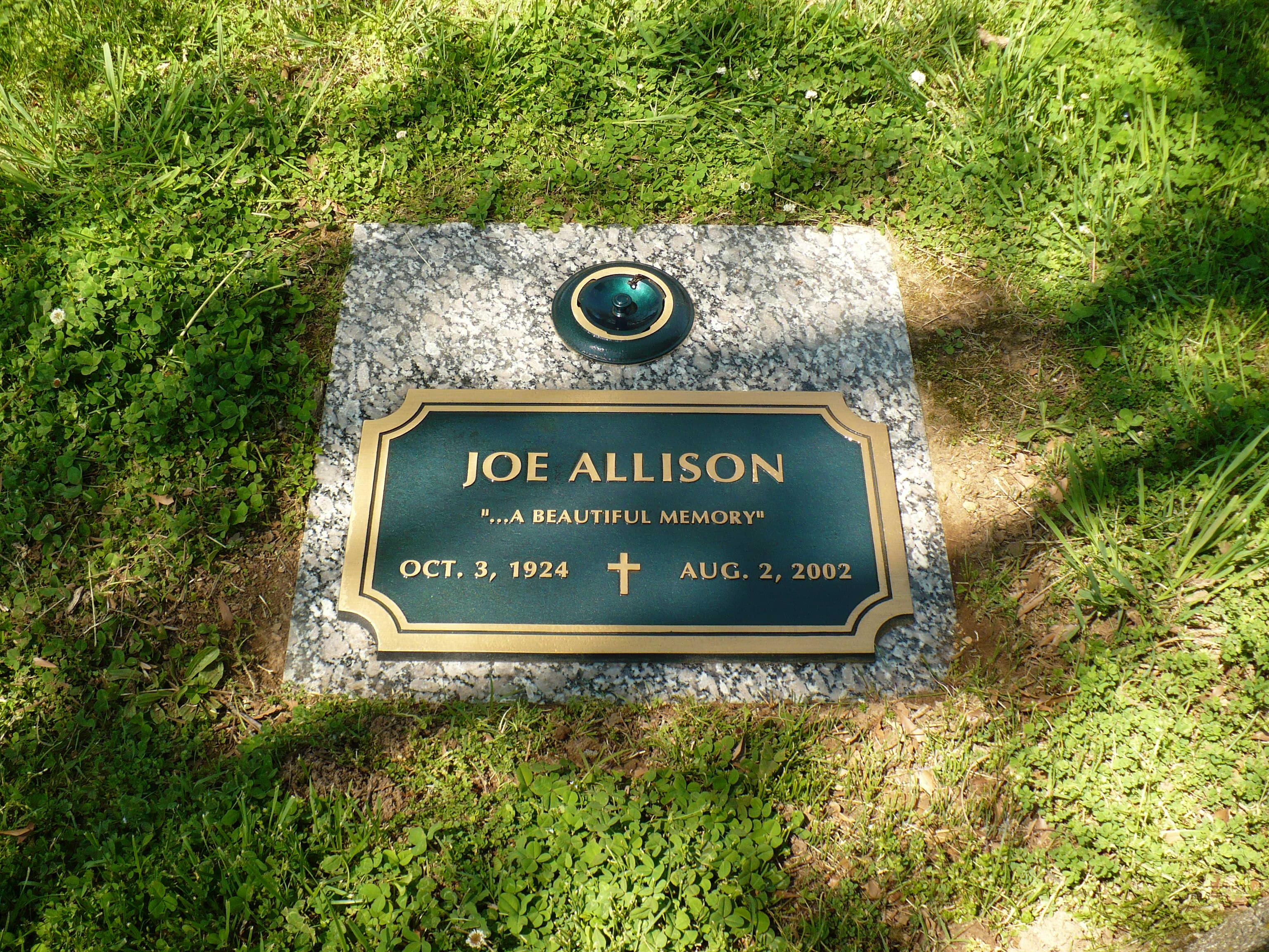 Joe Allison