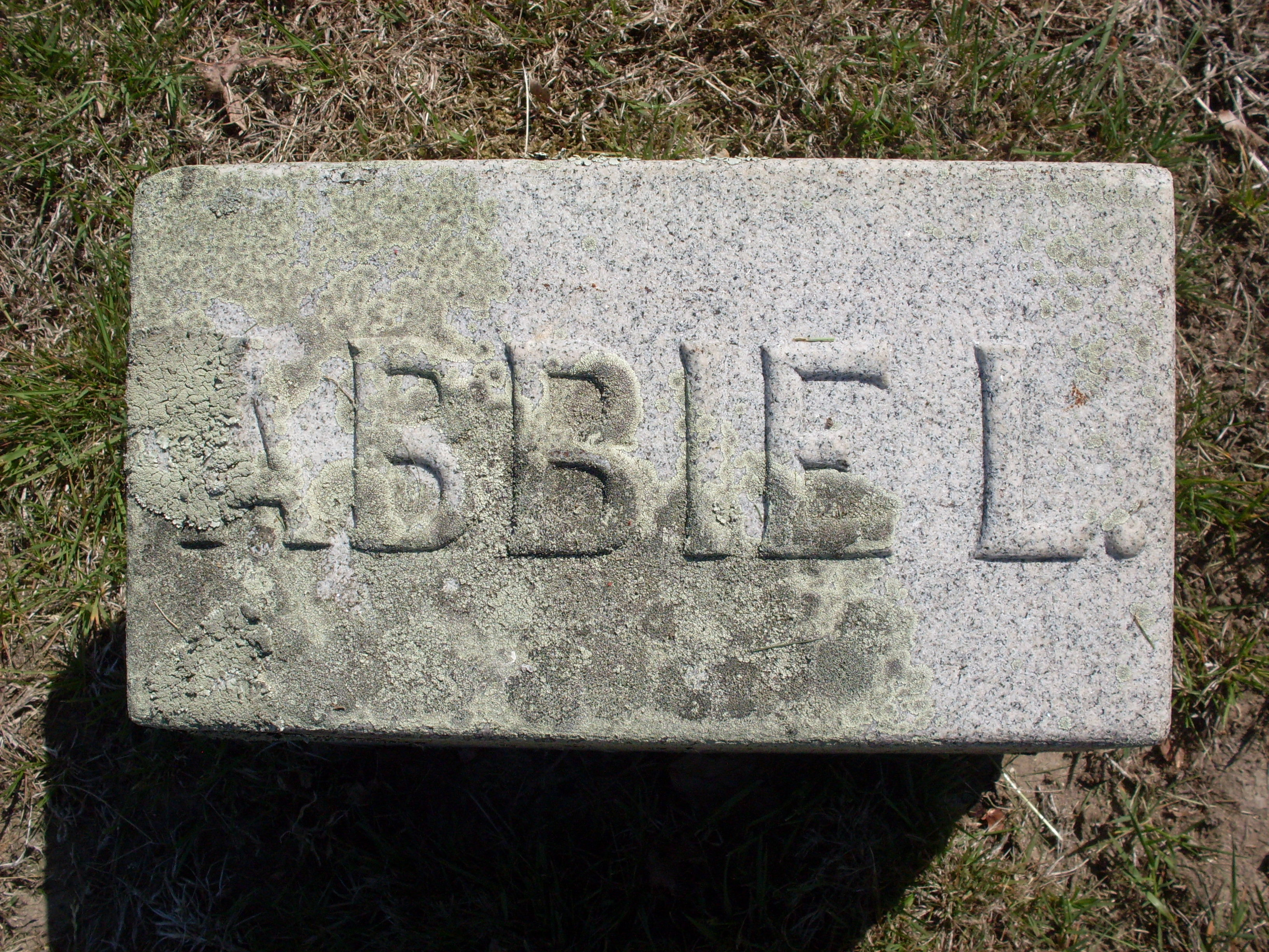 Abbie Lincoln <i>Cleverly</i> Allen