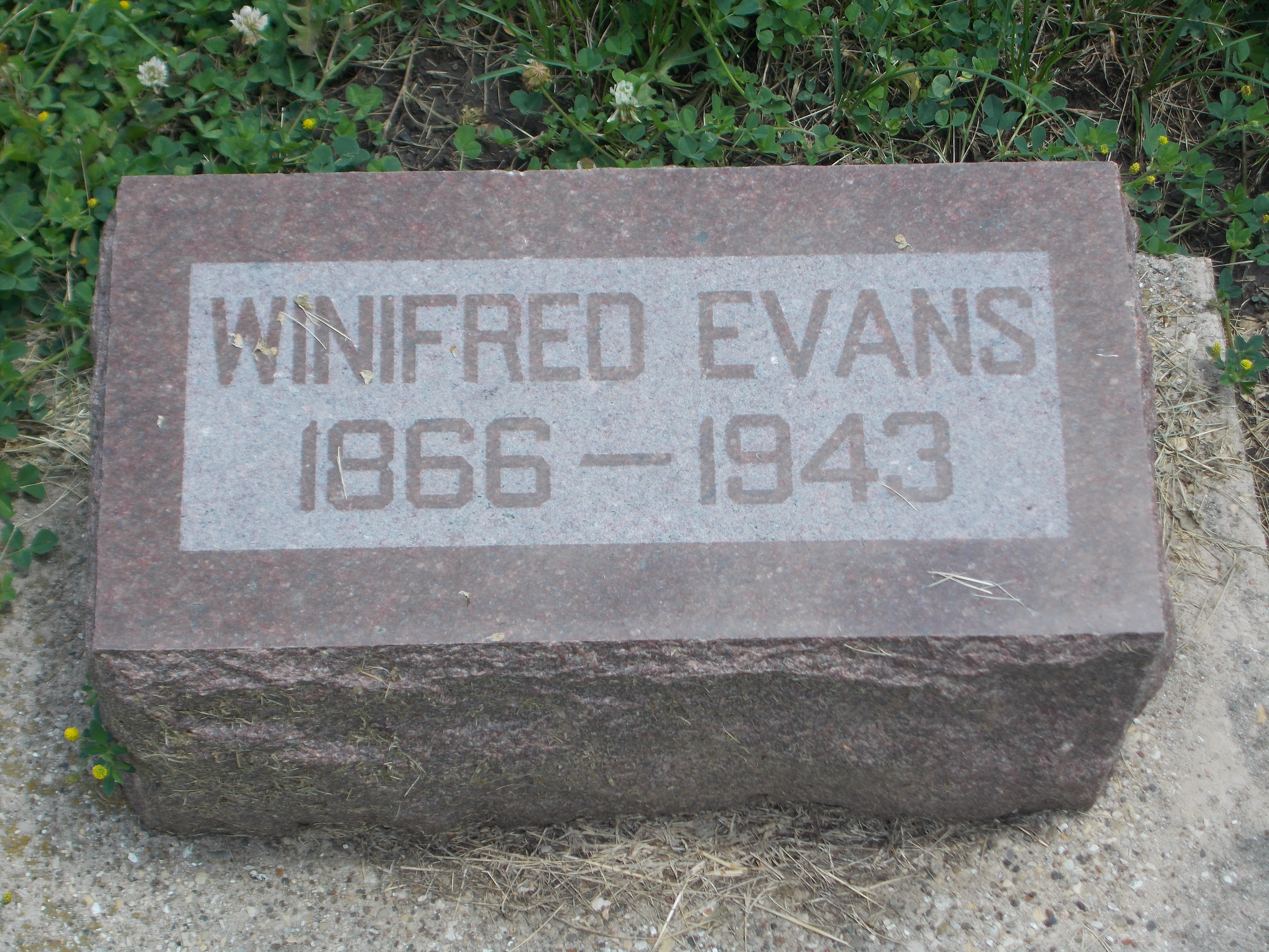 Winifred Evans
