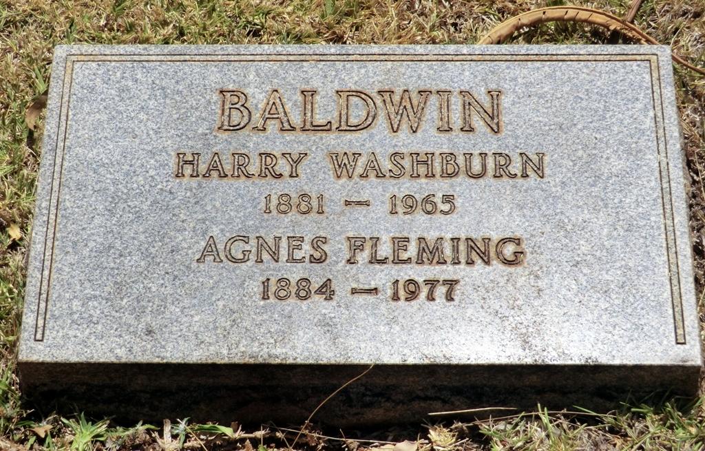 Agnes <i>Fleming</i> Baldwin