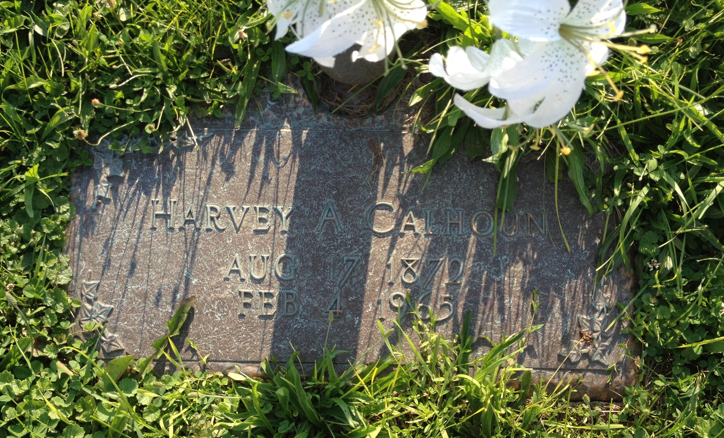 Harvey Austin Calhoun