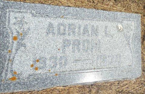 Adrian L Prom
