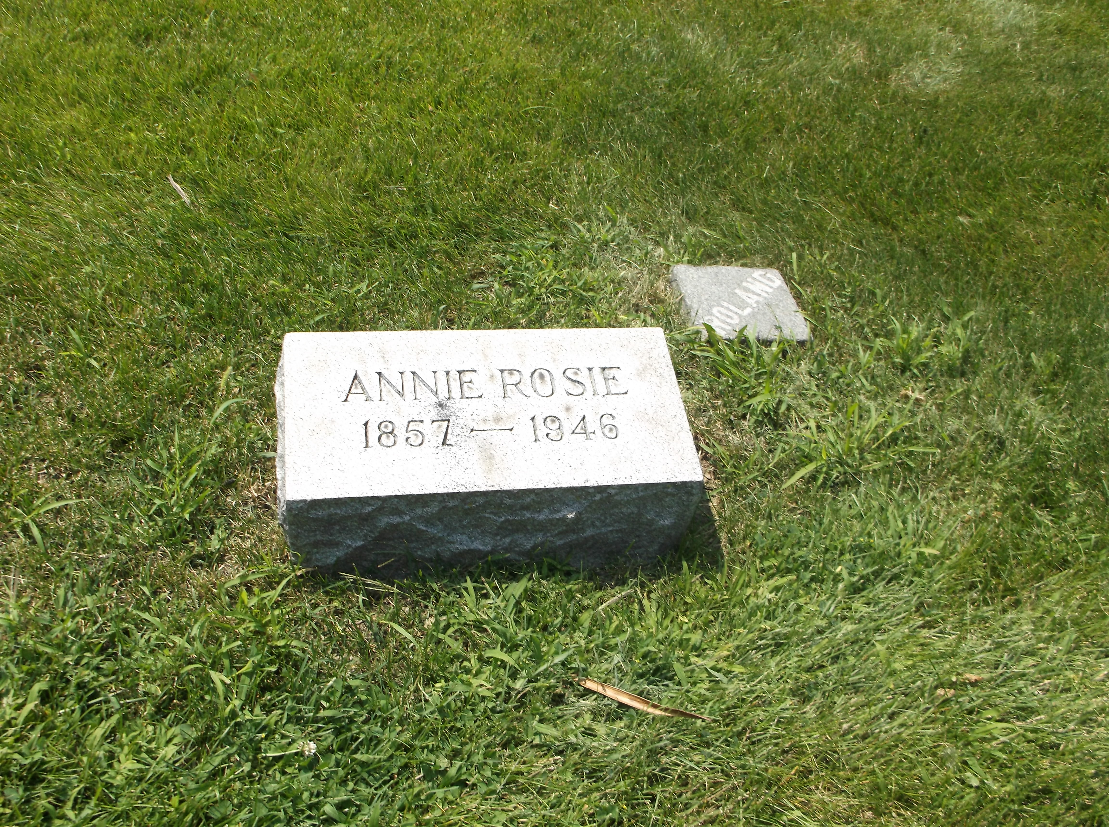 Annie Rosie