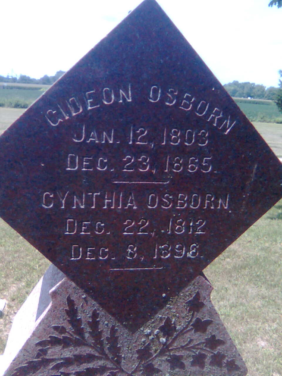 Cynthia <i>Porter</i> Osborn