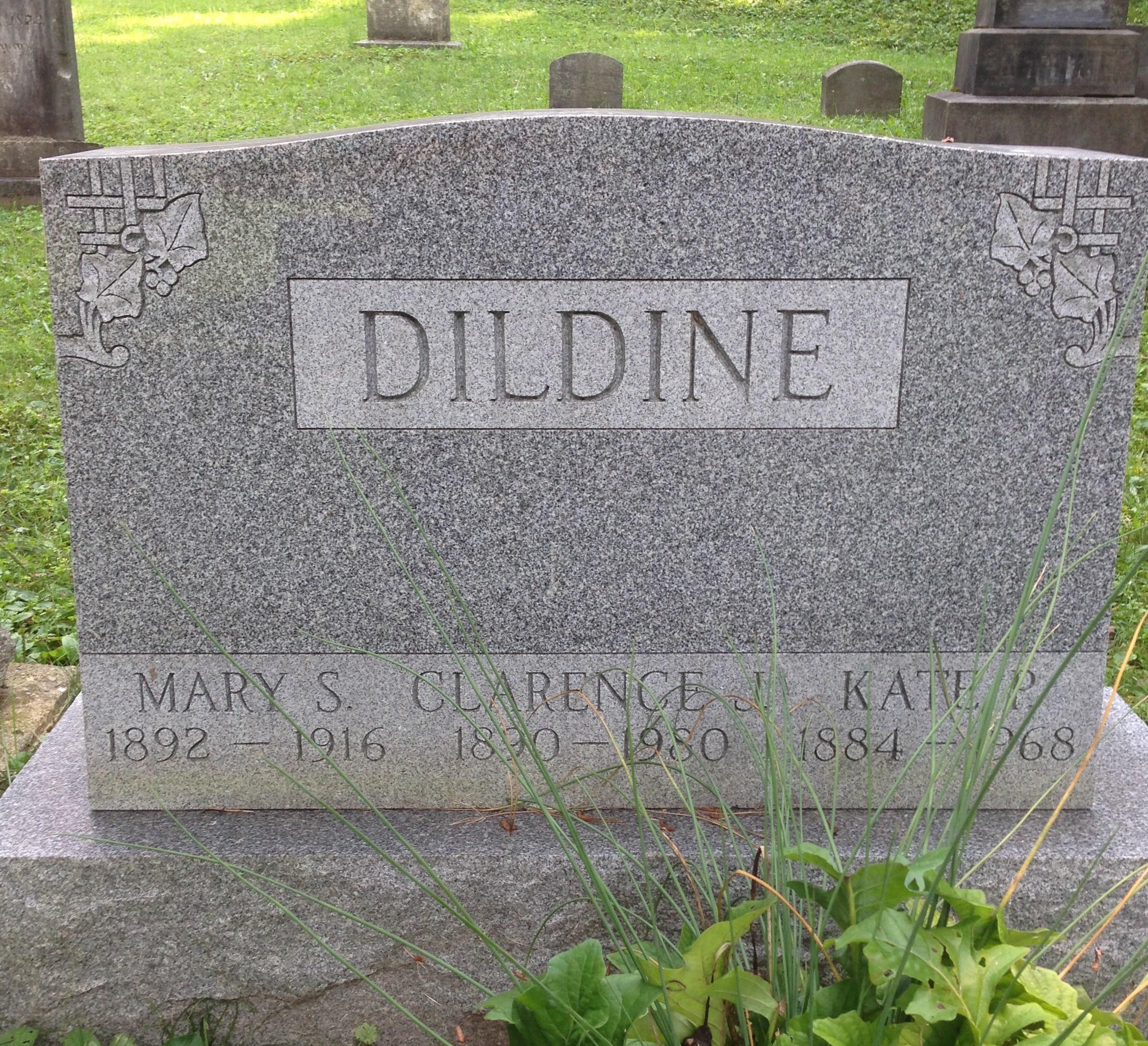Mary Morgan <i>Stephenson</i> Dildine