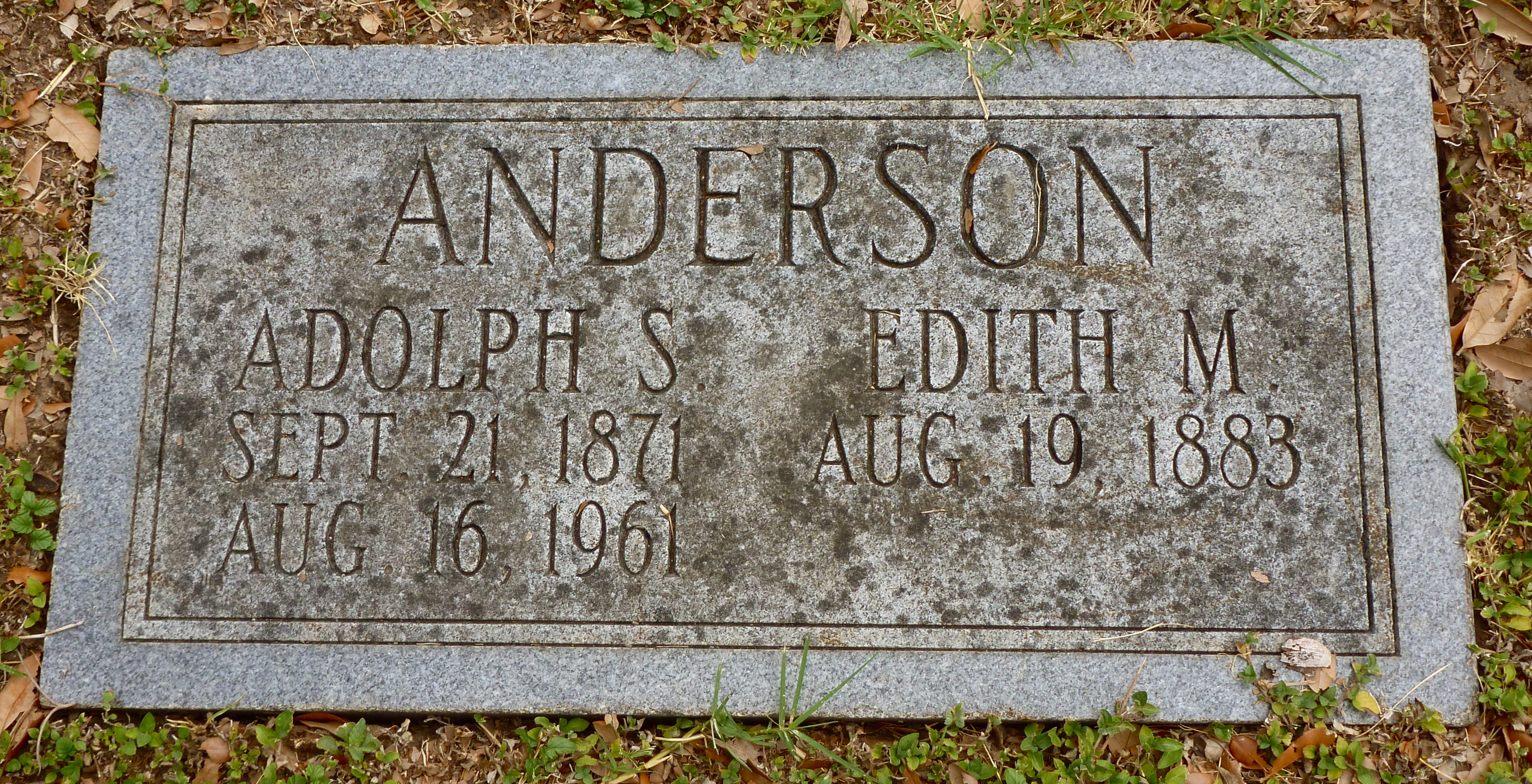 Adolph S Anderson