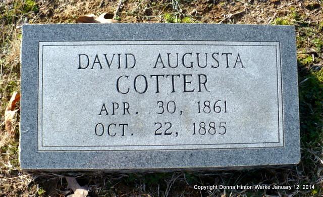 David Augusta Cotter