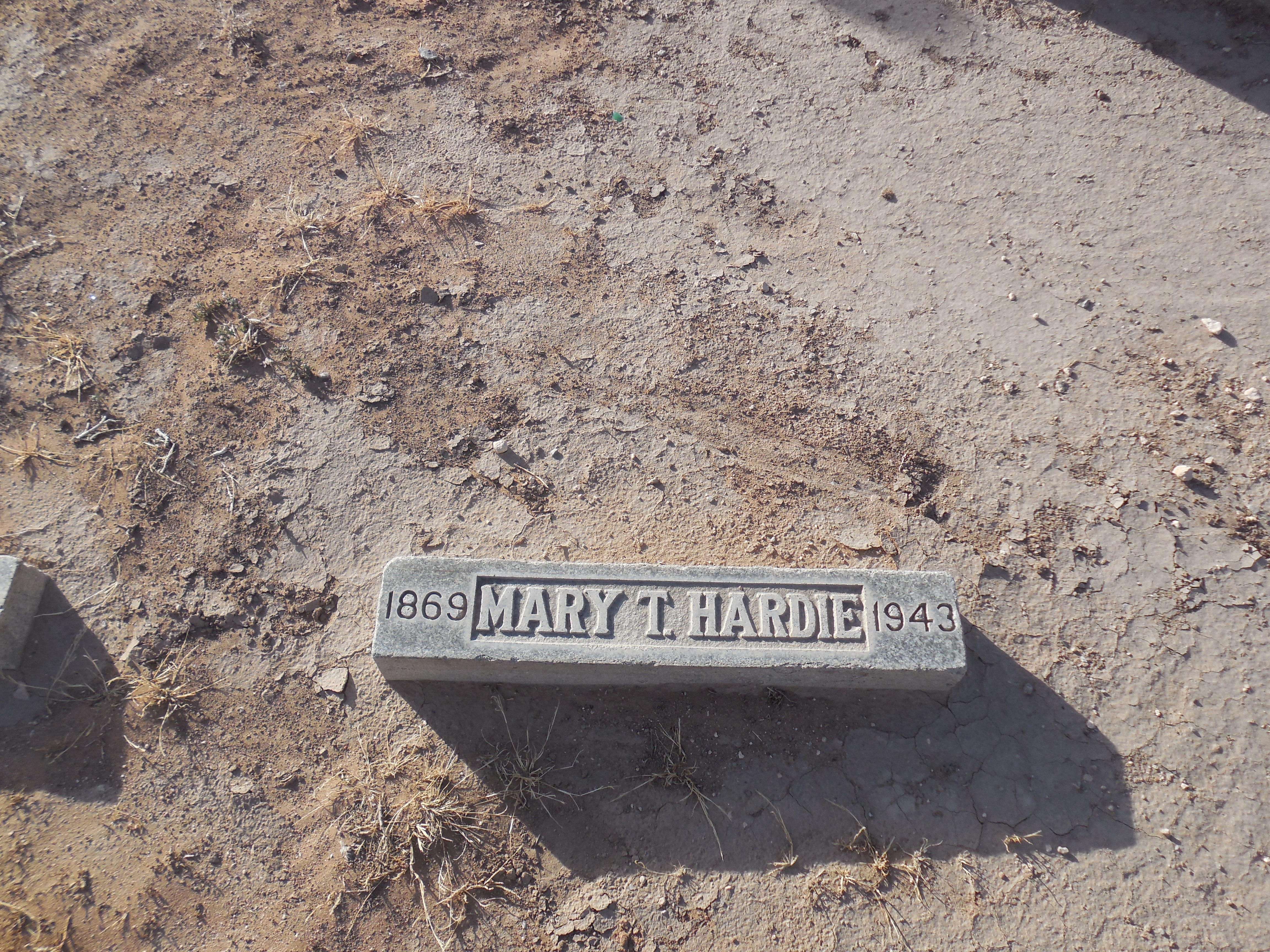 Mary Binion <i>Thornton</i> Hardie