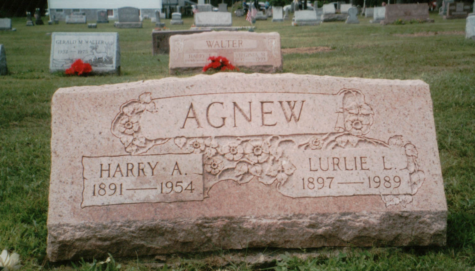 Lurline Leone <i>Ion</i> Agnew