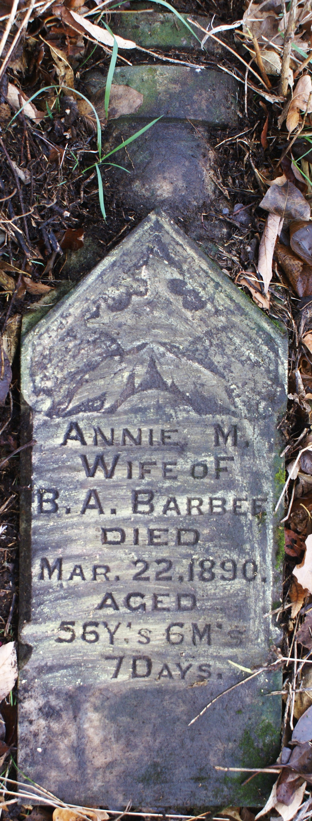Ann Morgan Annie <i>Turner</i> Barbee