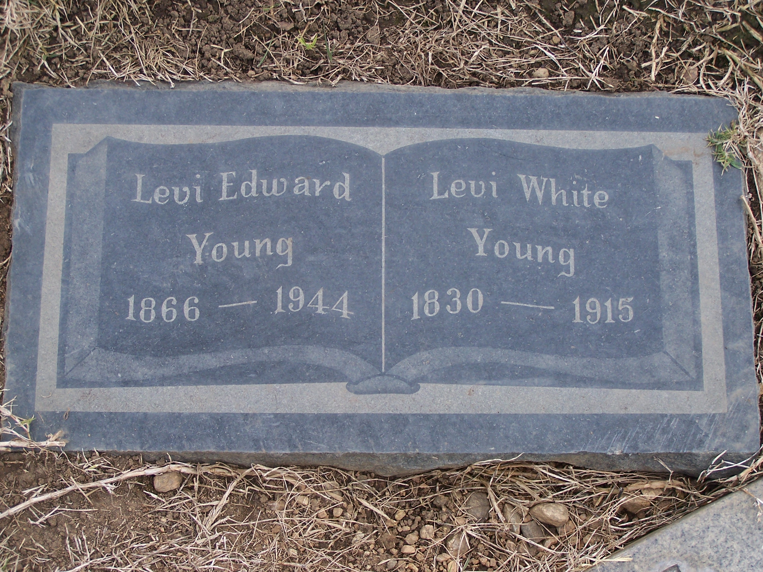 Levi White Young
