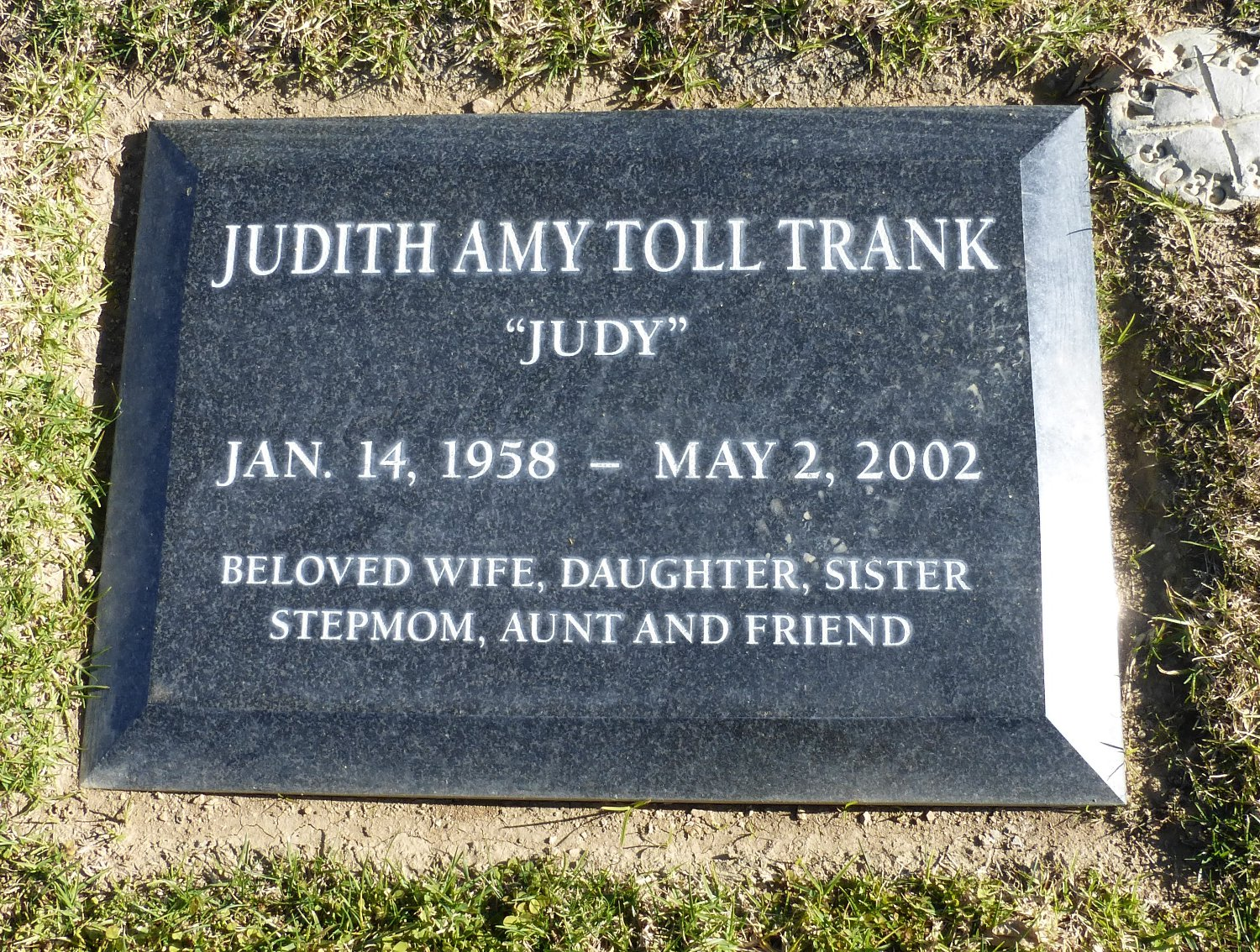 Watch Judy Toll video