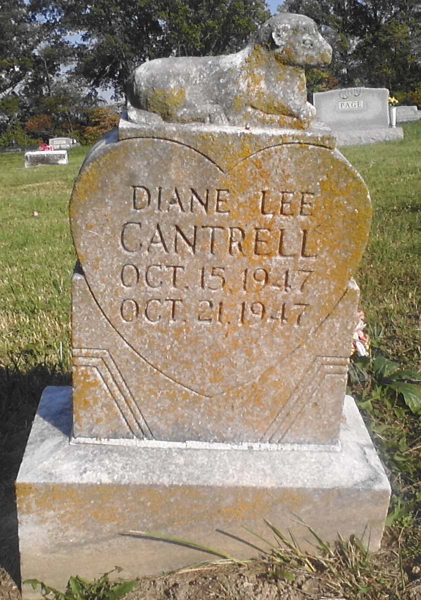 Diane Lee Cantrell