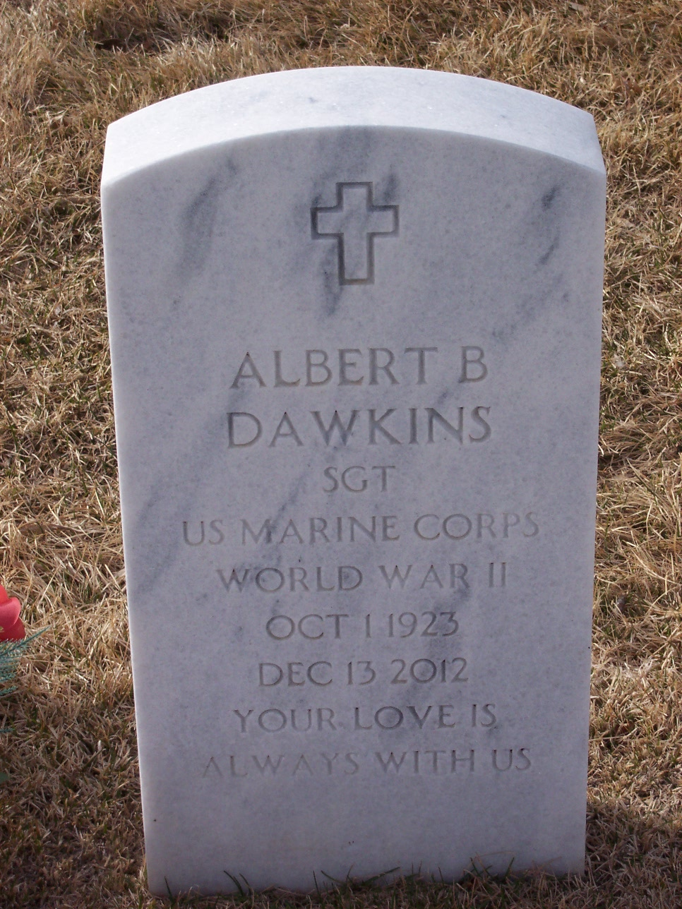 Albert B Dawkins