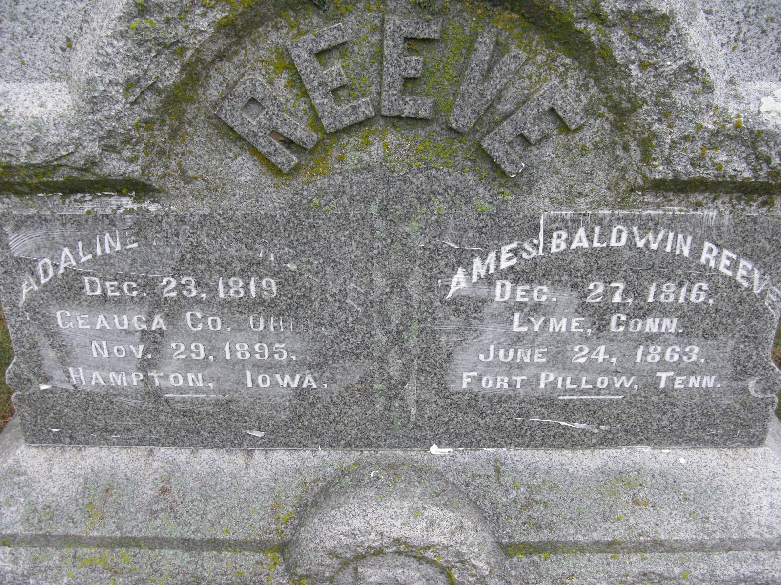 James B Reeve