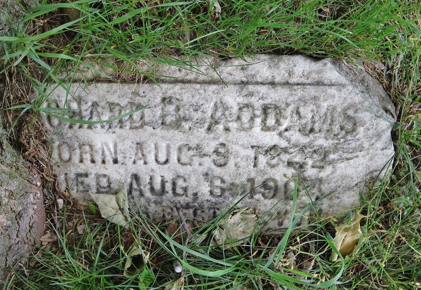 Richard B. Addams