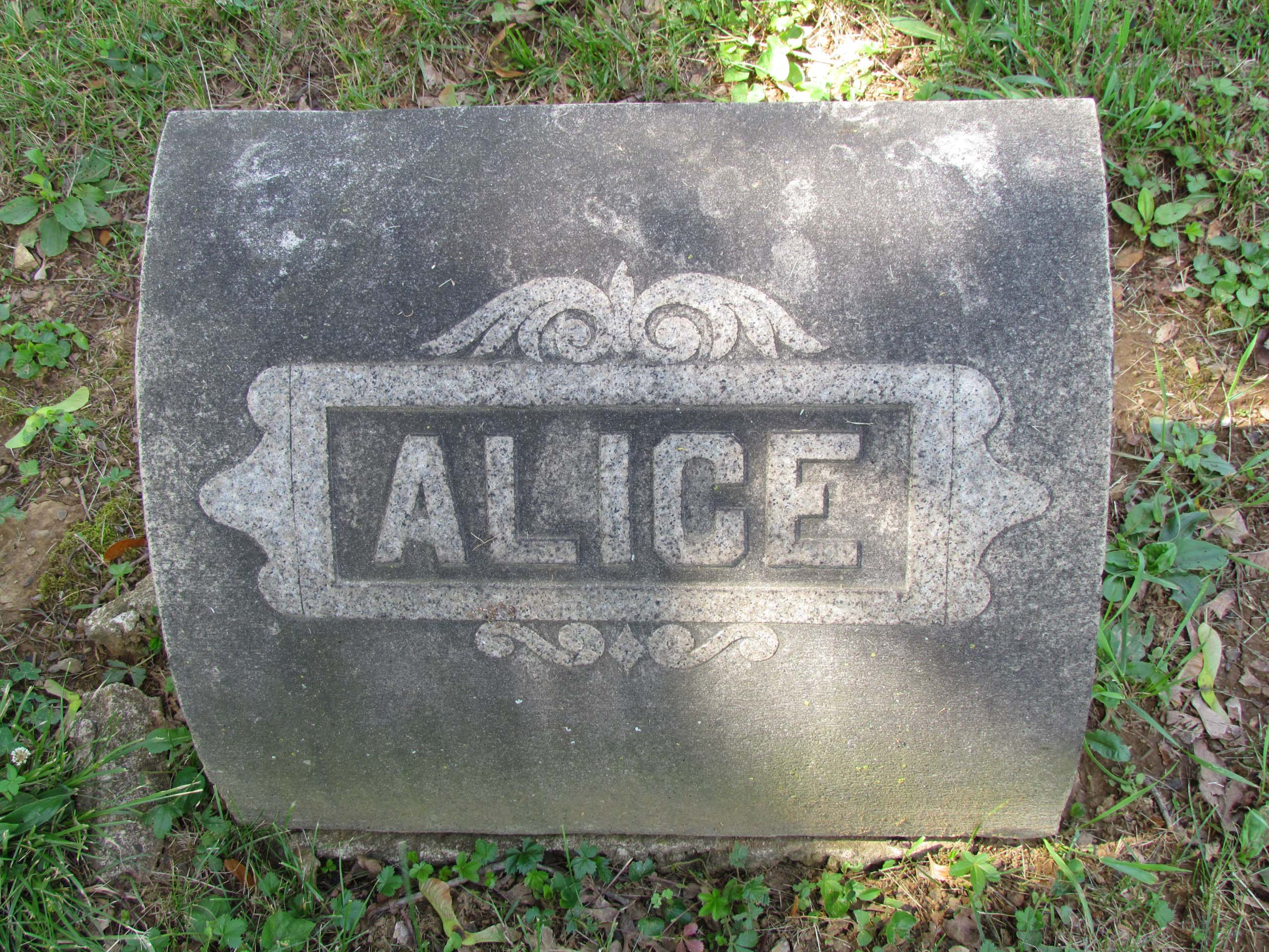 Alice B. <i>Drumheller</i> Moyer
