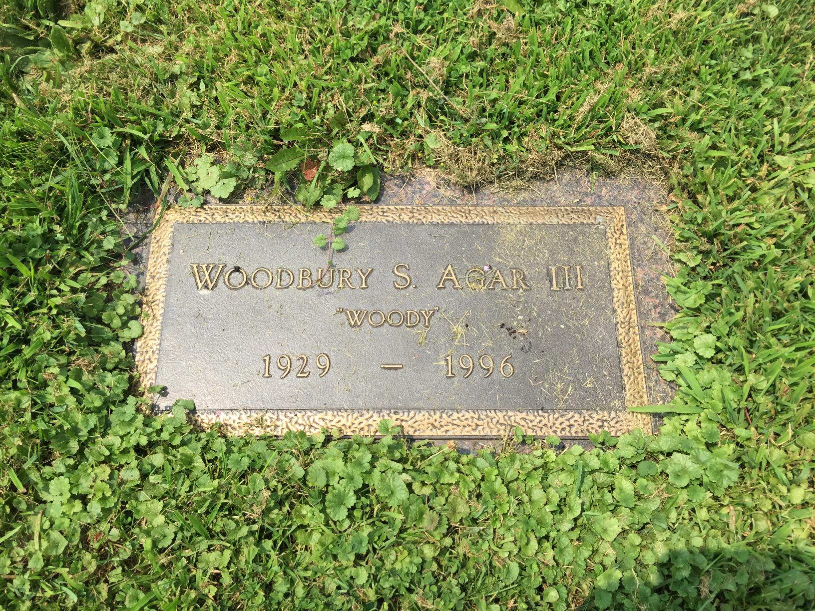 Woodbury Steams Woody Agar, III