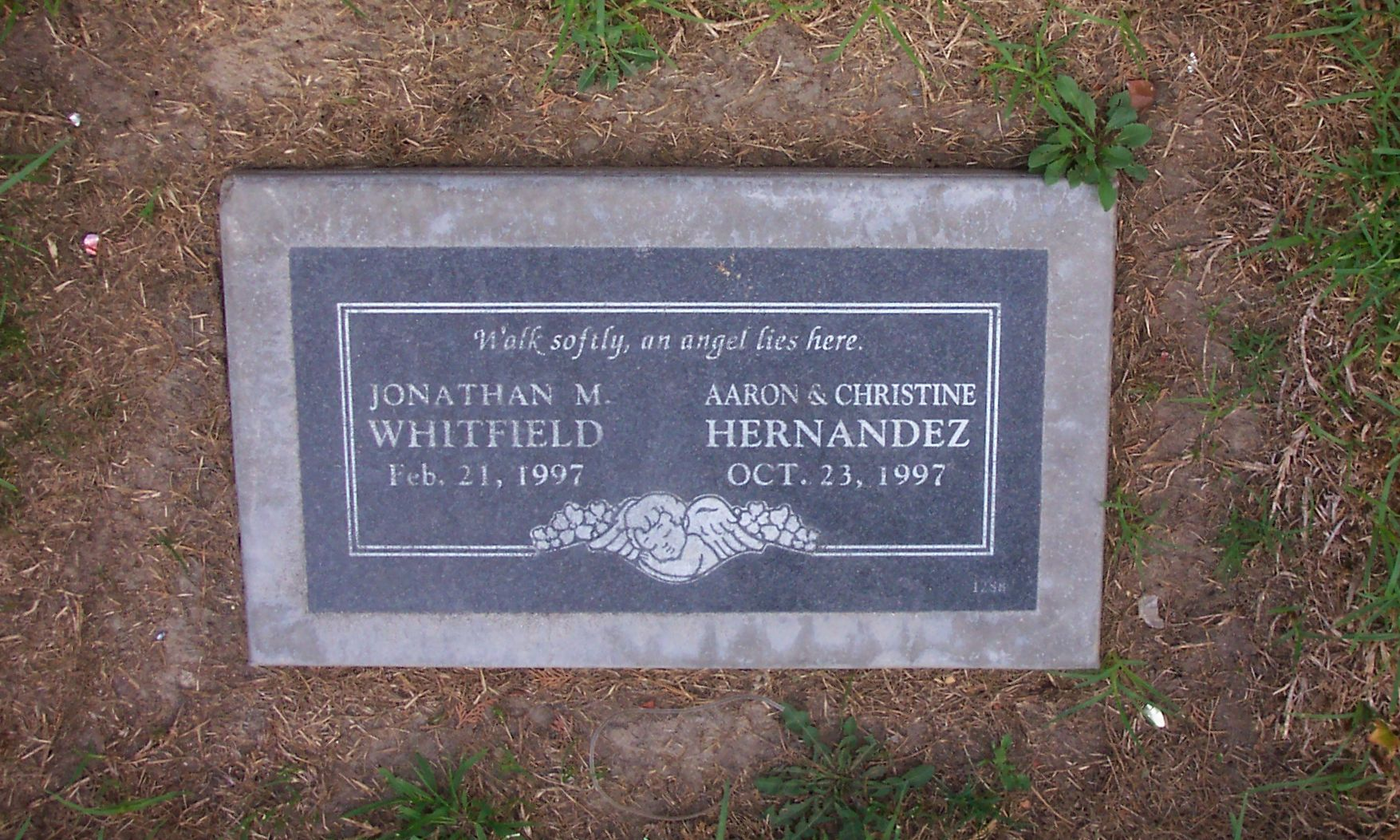 Aaron Hernandez Grave Wwwtollebildcom