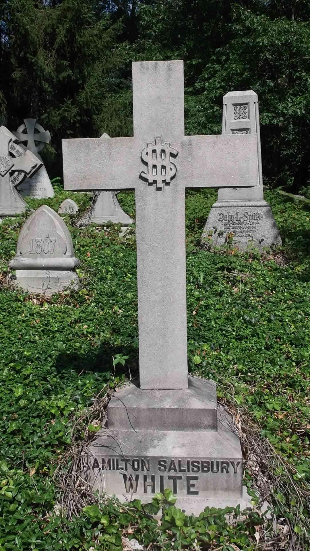 Hamilton salisbury white 1853 1899 find a grave memorial view original buycottarizona