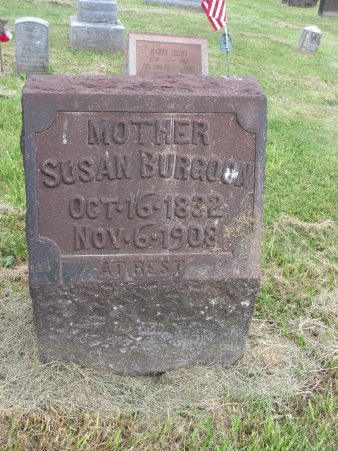 Susan <i>Hicks</i> Burgoon