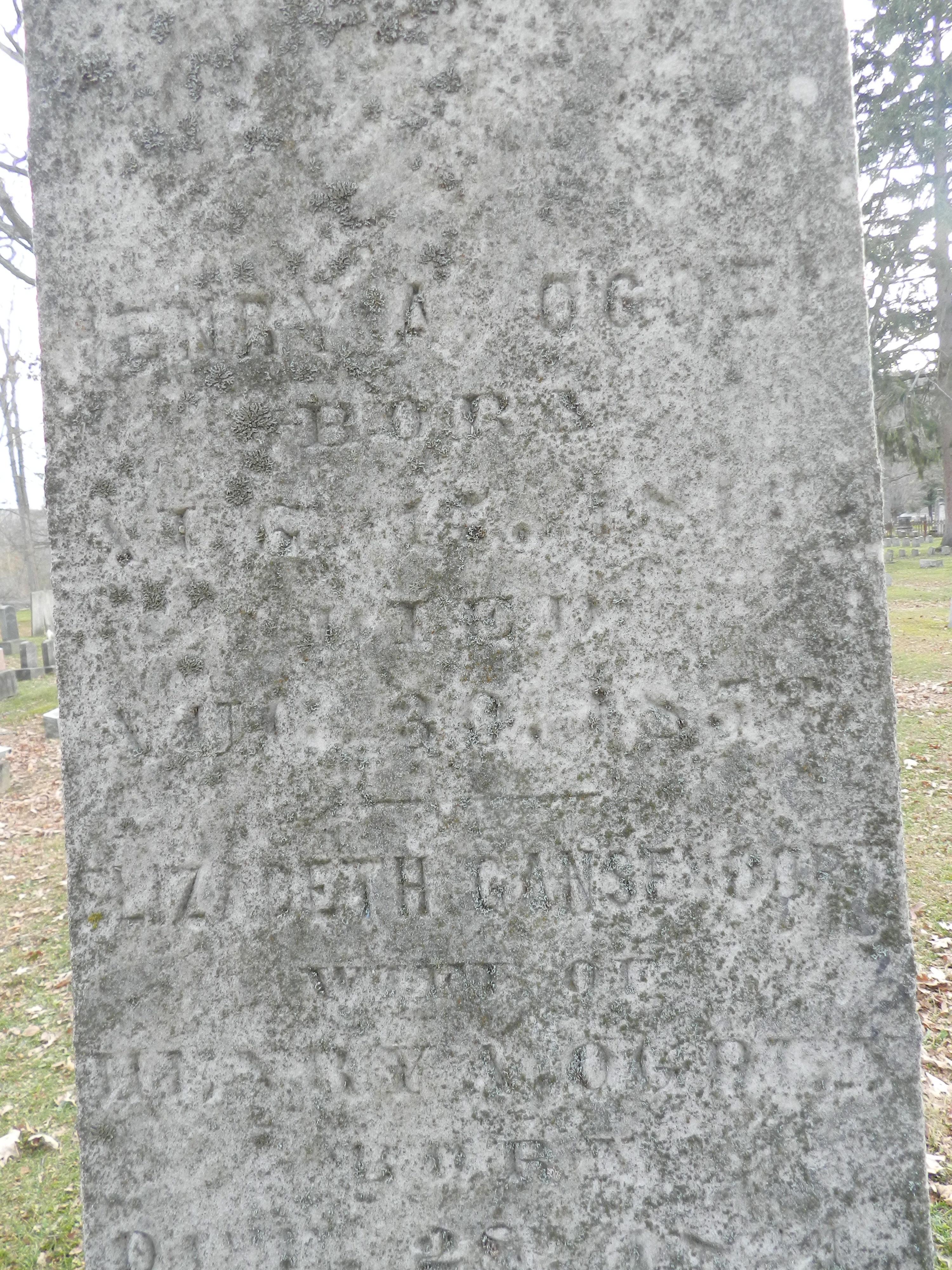 Henry Austin Ogden