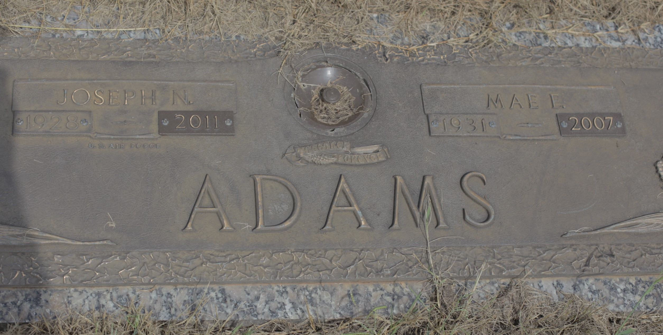 Joseph Nimrod Adams