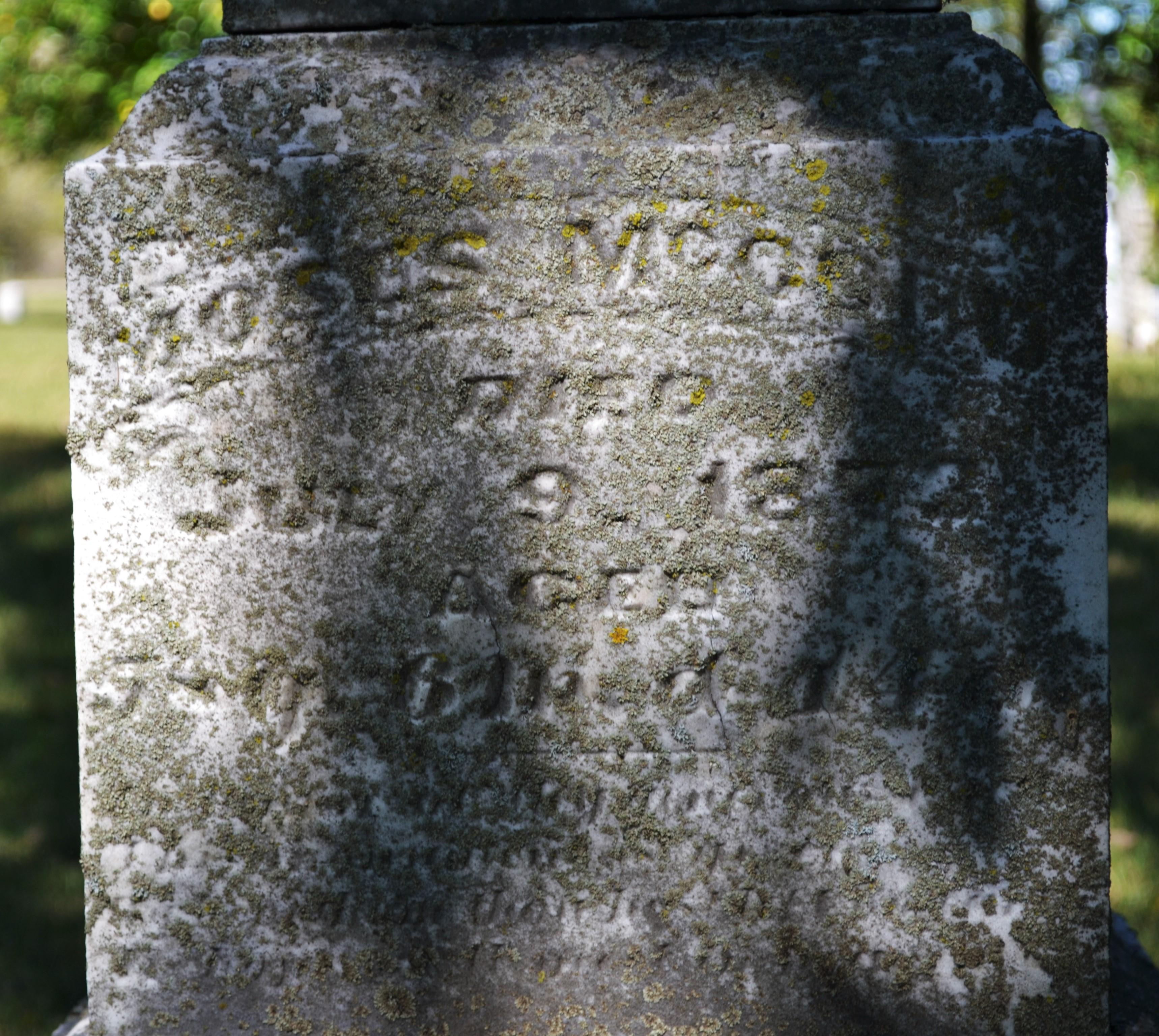 Moses McCord