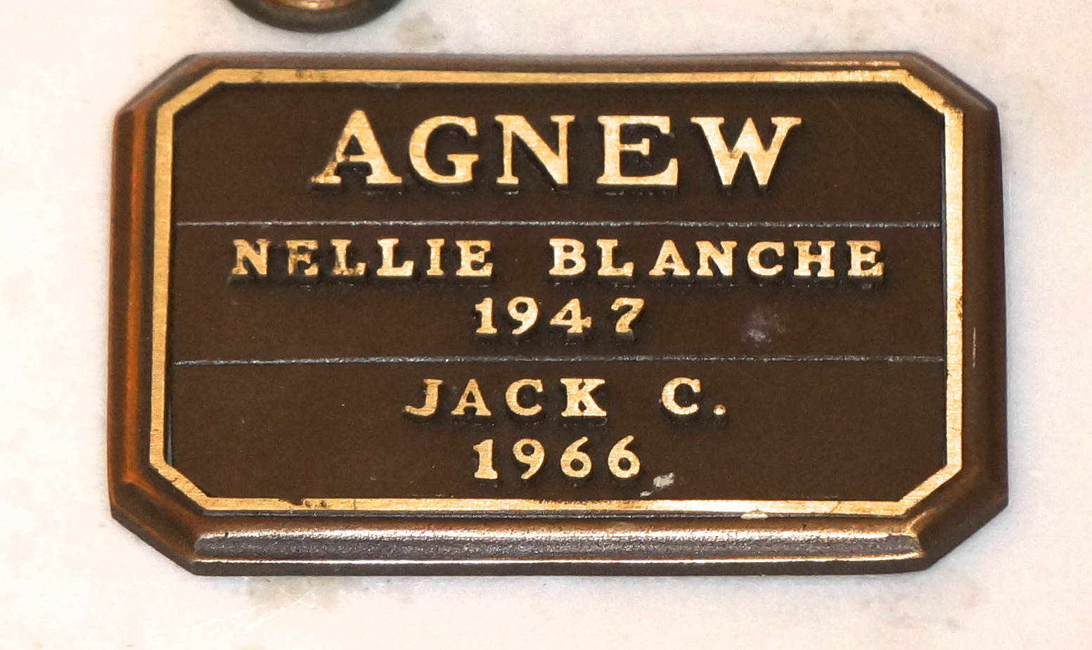 Nellie Blanche <i>Cook</i> Agnew