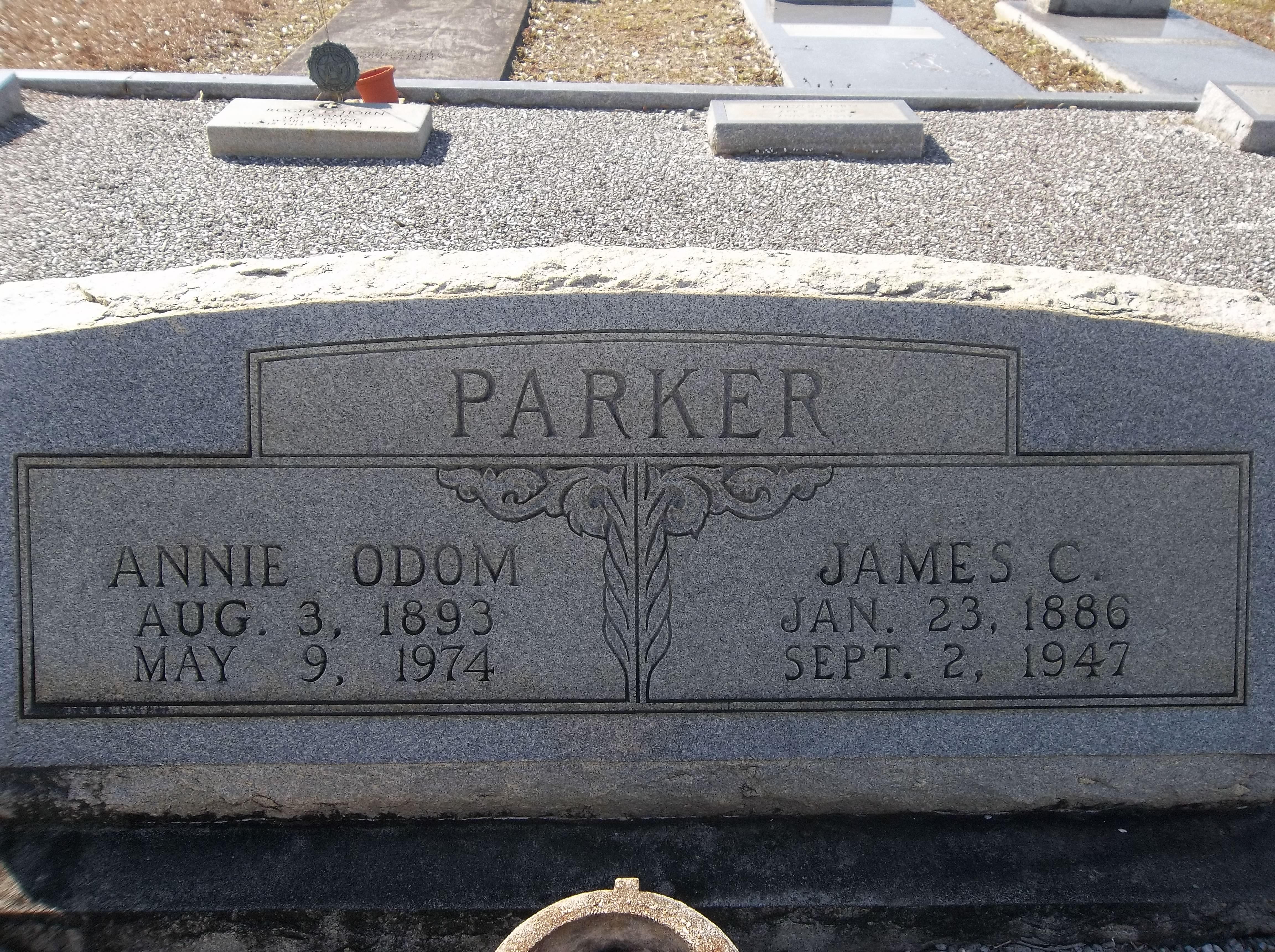 Annie Pamela <i>Odom</i> Parker