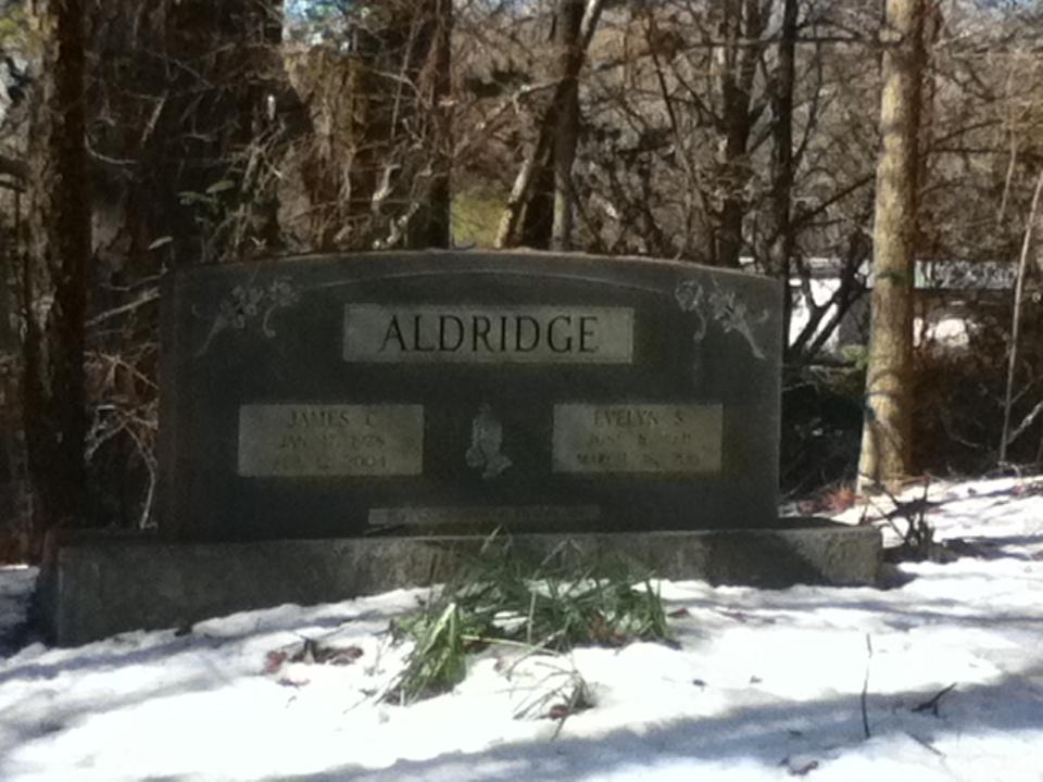 James C Aldridge
