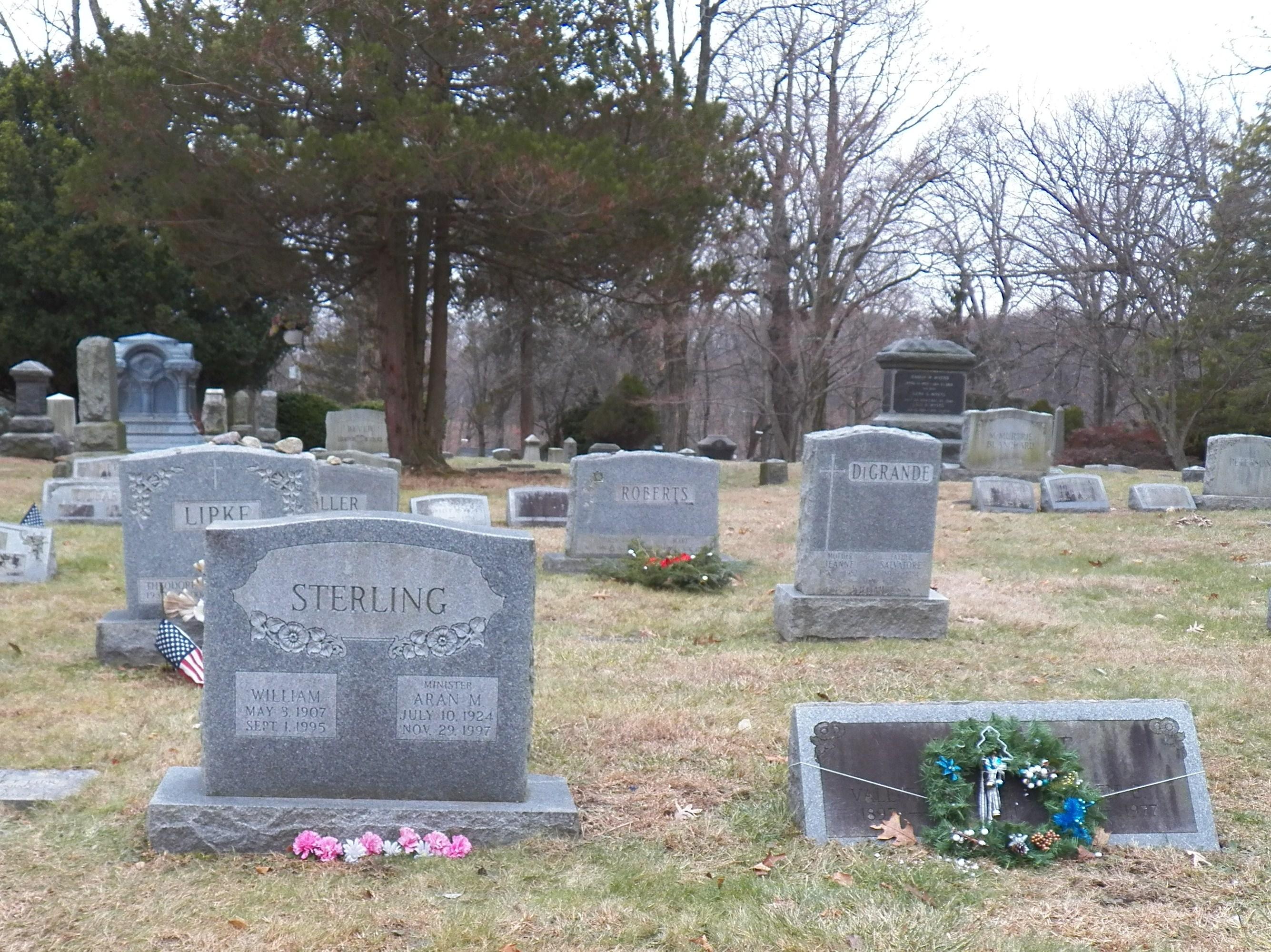 Aran M. Sterling
